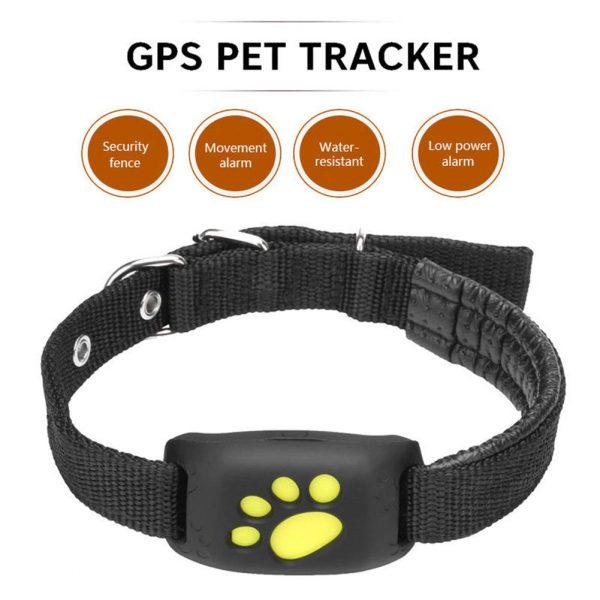 Le colier GPS, un accessoire idéal pour la localisation exacte de votre animal de compagnie
